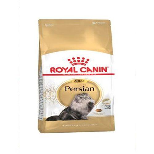Persian-Adult-Cat-4-KG