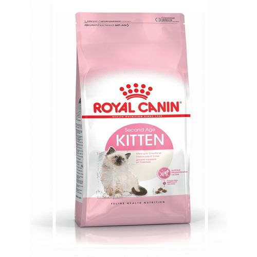 SECOND-AGE-KITTEN-2-Kg