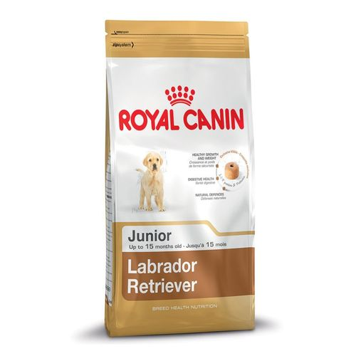 Labrador-Retriever-Junior-3-Kg